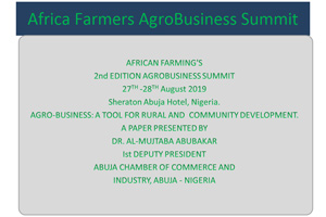 11_Agribusiness__a_tool_for_rural_and_community_development